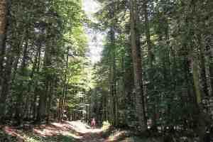 Trail en Vercors: Jour 2