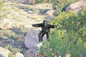 zion 100 gorilla picture