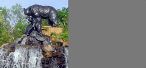 picture of tulsa midnight bear statue