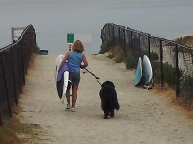 girl-dog-board-walking