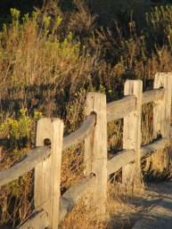 fenceline resize lagoon