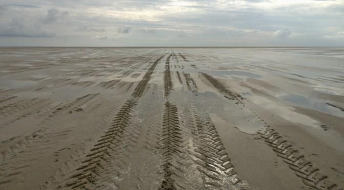Vadehavet ved Ebbe. Det er overskyet og der ses traktorspor i havbunden