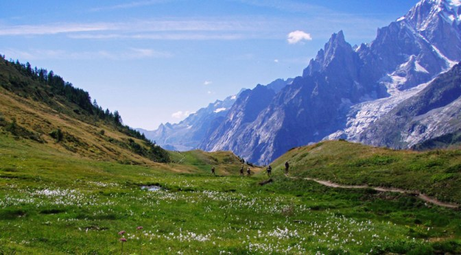 En smuk dag i alperne. Solen står højt, græsset er grønt og bjergene er blå i lyset.