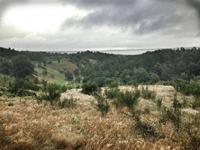 Udkig fra Mols Bjerge