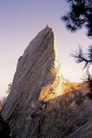 Apr 1977: Chumstick Snag In Spromberg Canyon