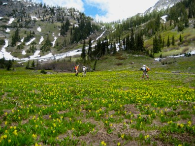 Tenmile Basin and Hilgard Pass