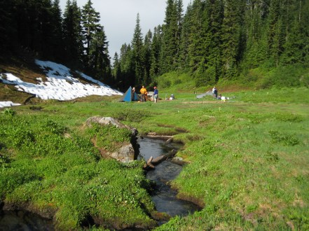 Camp 5 At Bachelor Meadow