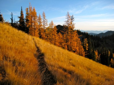 Morning Trail To Boulder Butte
