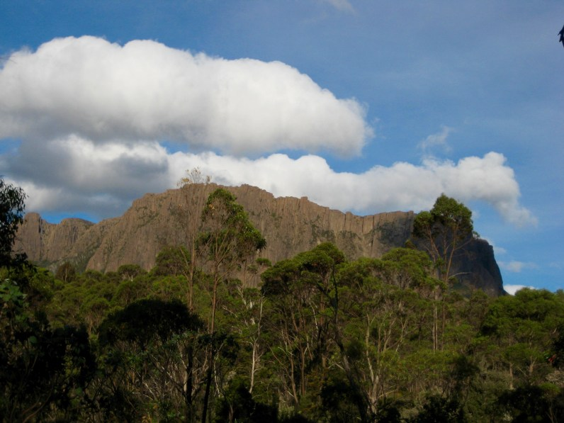 Cathedral Mtn From Overland Track