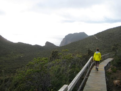 Boardwalk Trail To Cape Pillar