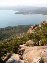 Coles Bay From Mt Amos