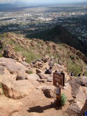 Upper Part Of Cholla Trail
