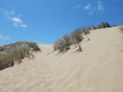 Sand dunes!