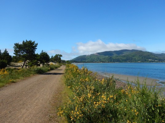 Returning to the trailhead on the Tillamook Bay side of the Bayocean Spit. One of my favorite Oregon hikes!