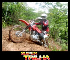trilhc3a3o-dos-coqueiros148