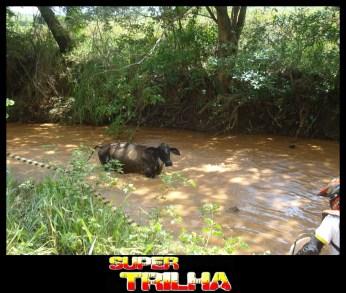 Trilhão de Porteirinha 046 2011-02-27 10.24.14