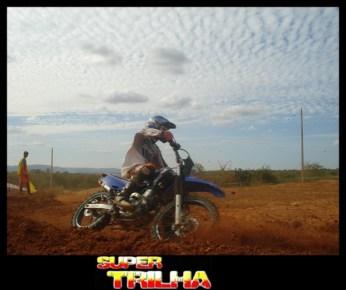 Veloterra - 155- Bicho do Mato