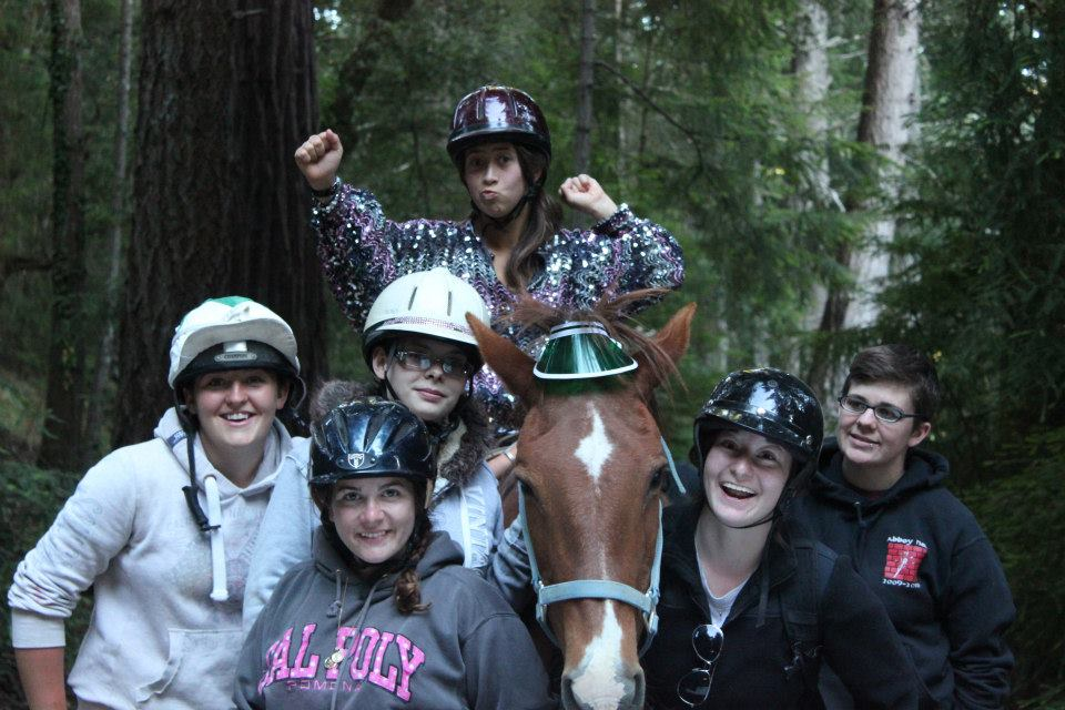 Horse Program Memory: Squirrely