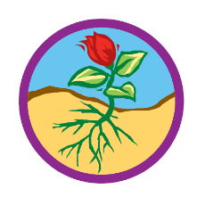 Junior Flowers Badge