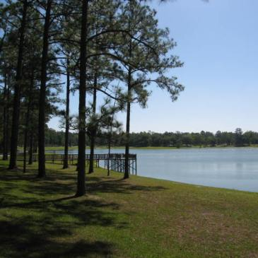 Hikes in Conecuh National Forest (AL)