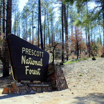 Best Hikes in Prescott National Forest (AZ)