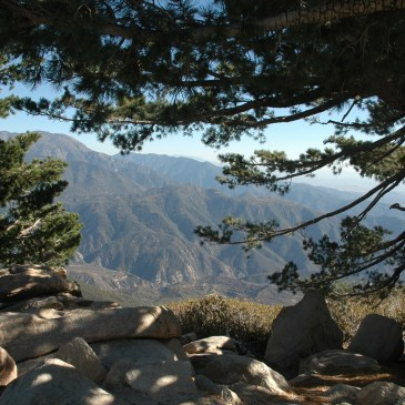 Best Hikes in San Bernardino National Forest (CA)