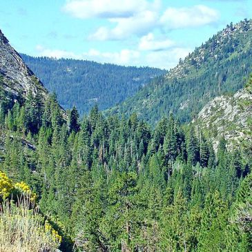 Best Hikes in Eldorado National Forest (CA)