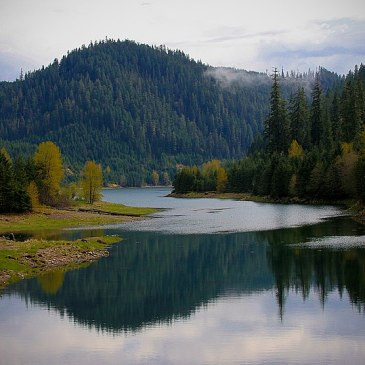 Best Hikes in Willamette National Forest (OR)