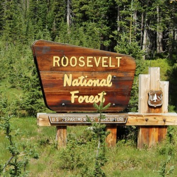 Best Hikes in Arapaho & Roosevelt National Forests (CO)