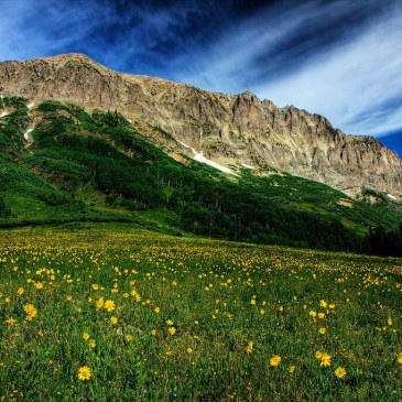 Best Hikes in Grand Mesa, Uncompahgre, and Gunnison National Forests (CO)