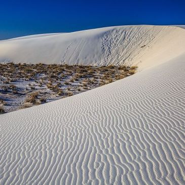 5 Best Day Hikes in White Sands National Park