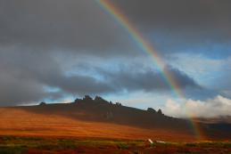 Tundra Rainbow
