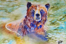 33 AndreaWillingham Water Bear