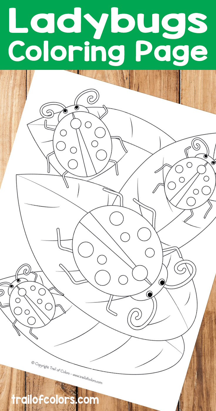 Ladybugs Coloring Page Free Printable For Kids Trail Of Colors