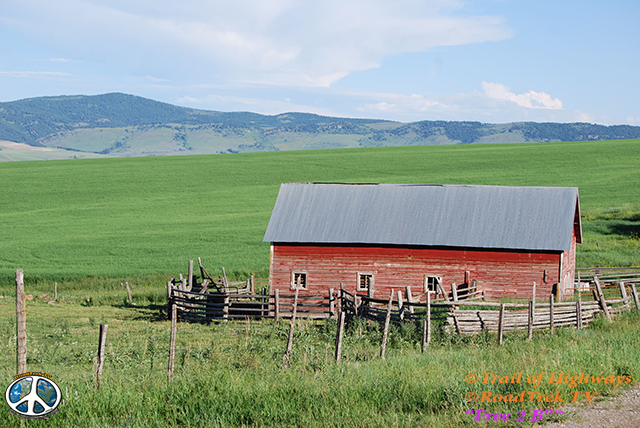 Montana-Backroads-Spring-Birdwatching-Trail of Highways-RoadTrek TV-Social SEO-Organic-Content Marketing-Tom Ski-Skibowski-Photography-Travel-Media-19