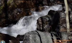 Cow Creek Rocky Mountain National Park, Hiking trail