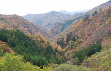 Kanna-Mochigura
