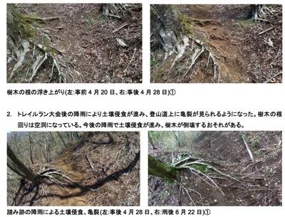 Homepage2 nifty com yoshina archive utmf2013report pdf