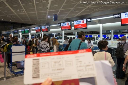 IznikUltra Narita Boarding Pass