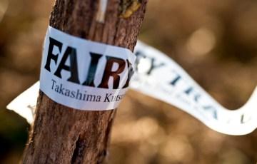 FairyTrail-14Fairy0005