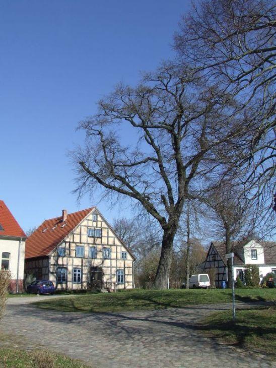 Hübsches, renoviertes Fachwerkhaus