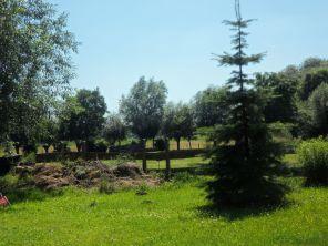 Garten der Radlergaststätte Klostergarten