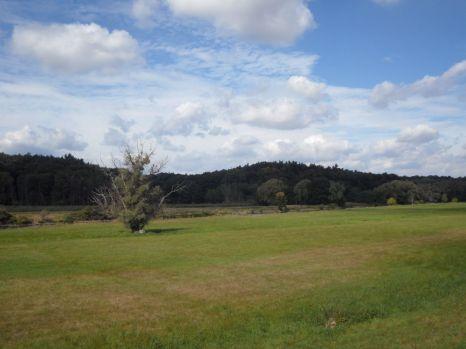 Im Nationalpark Unteres Odertal