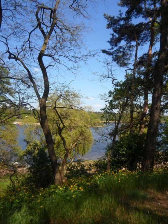 Blick auf den Ferchesarer See