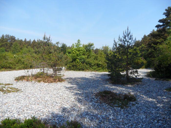 Feuersteinfelder