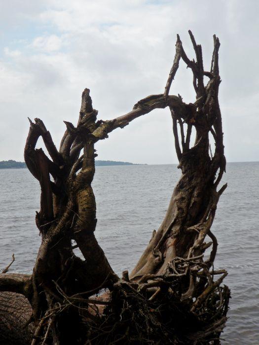 Rügenscher Bodden mit der Insel Vilm