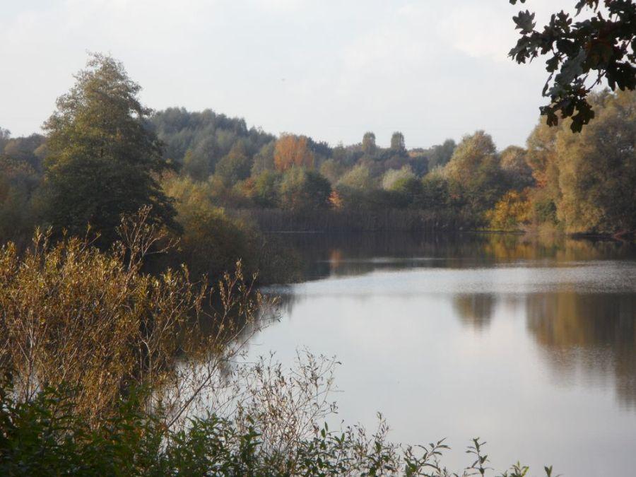 Der Lasszinssee im Spandauer Forst