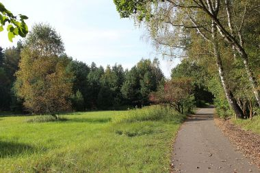 Am Mauerradweg im Spandauer Forst