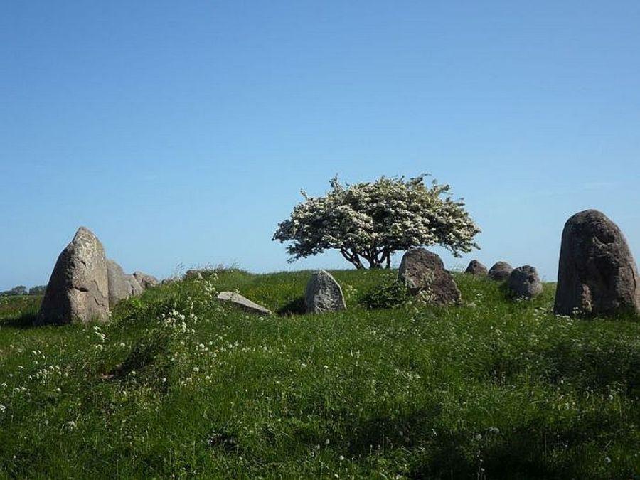 Großsteingrab mit Wächtersteinen am Riesenberg bei Nobbin