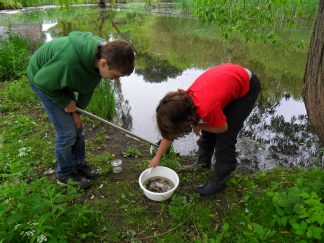Two Wildlife Watch members investigating the results of their pond dip.